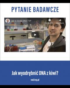 Jak wydobyć DNA z kiwi?