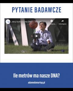 DNA/ADAMEDSMURTUP