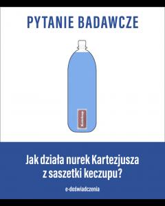 e-Nurek Kartezjusza Keczup