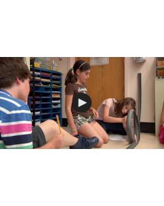 Fizyka w wesołym miasteczku - Roller Coaster/ TeachingChannel