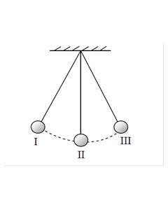 Jak wyznaczyć okres i częstotliwość wahadła? / Projekt