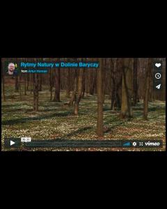 Rytmy Natury w Dolinie Baryczy / ARTUR HOMAN Vimeo